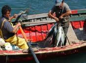 Consejo regional lima aprobó proyecto jubilación pesquera artesanal…