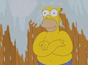 Homero Simpson desafía Donald Trump Bucket Challenge