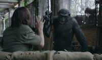 photo dawnoftheplanetoftheapes96_zps61c42eb6.jpg