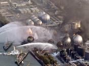impacto catástrofe Fukushima