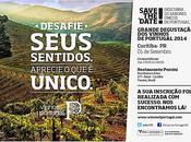 Road Show Curitiba 2014 organizado Vini Portugal Wines