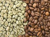 Secuencian genoma planta café