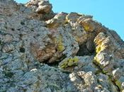 Cueva Zorra Mora Toledo