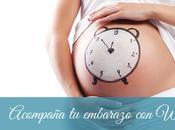 Durante embarazo Weleda