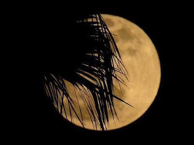 ¿Te has perdido la Superluna? Vuelve a verla esta noche.