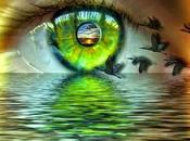 Verdes ojos