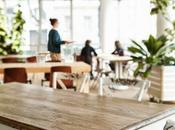 Verdant Bakery Viena tienen mesa comedor!