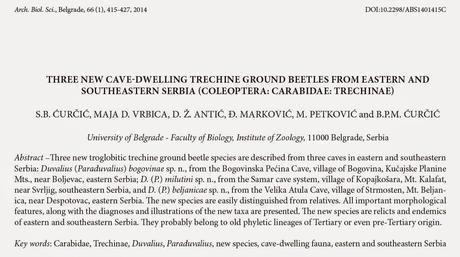 Nuevos coleópteros carábidos de cuevas de Serbia
