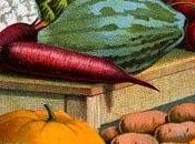 Conserva verduras tiempo como primer