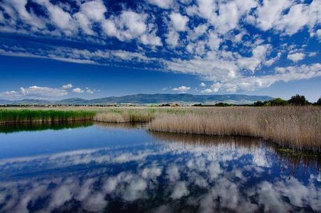 tablas-de-daimiel-parque-nacional