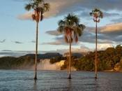 Laguna Canaima atardecer, Venezuela