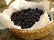 Blackberry (pie moras)
