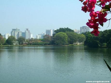 SAP-002-Parque Ibirapuera-8