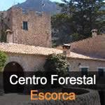 centro-forestal-sierra-de-tramuntana