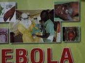 alocada carrera patentar tratamientos para ébola