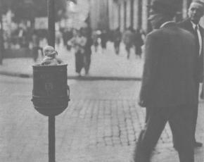 Modelo de 'pedrito', en las calles de Madrid