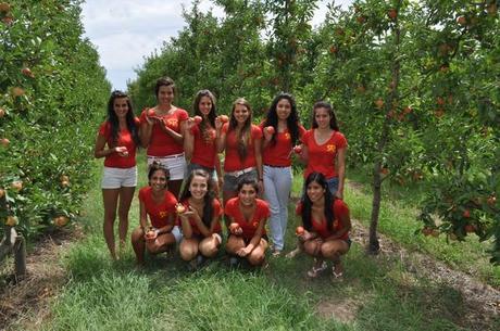 La Fiesta Nacional de la Manzana en el Valle del Rio Negro.