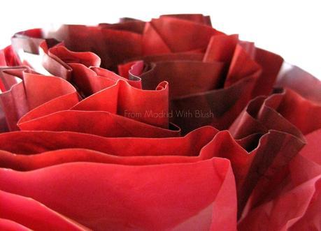 NOVEDAD:  Wild Rose de Korres - El poder correctivo de la rosa salvaje