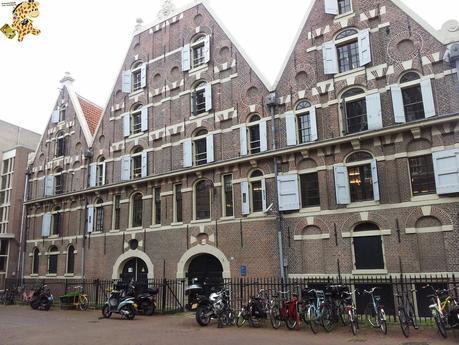 Qué ver en Amsterdam en 2 días? (II)