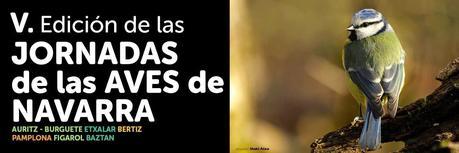 Nos vemos este fin de semana en las V Jornadas de las Aves de Navarra