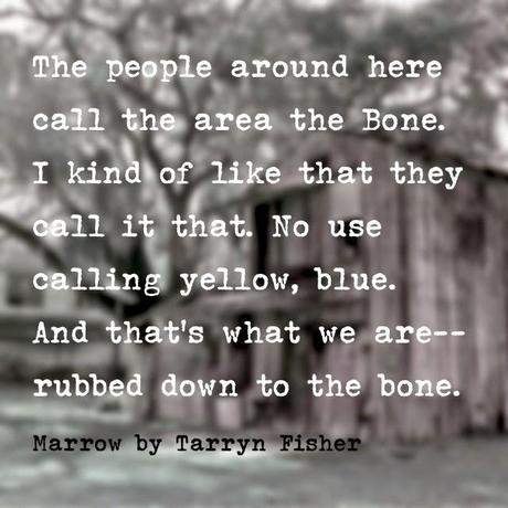 Sinopsis revelada: Marrow - Tarryn Fisher  Español/English