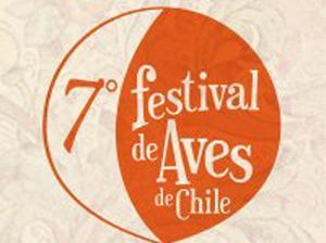 7 Festival de aves de chile 300x200