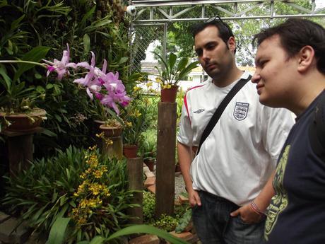 DSCF5997 Traveler 2 Be en el Jardín Lankester