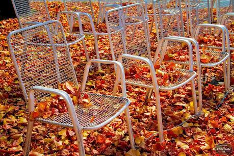 foto del otoño sillas