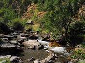 agua Sierra Nevada sube