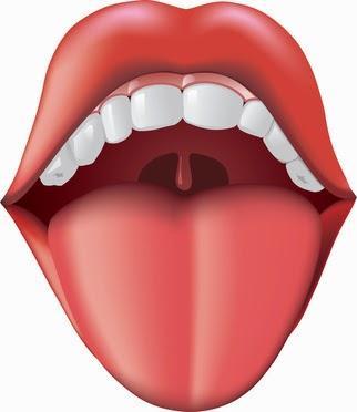 La lengua también nos habla