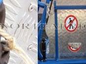 niños discapacidad Melilla tiene prohibido utilizar columpio adaptado para ellos Parque Infantil Hernández