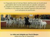 "D'SHERRY EXPLORERS: Visita ""Yeguada Cartuja-Hierro Bocado"" degustación vinos ""Bodegas Faustino González"" Jerez"