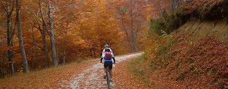 Montar en bicicleta en otoño