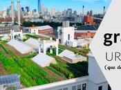 granjas urbanas llamarán atención
