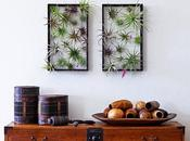 Airplantframe: Jardinería Vertical, Arte Decorativo