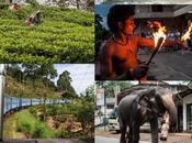 Lanka 2014 días descubrimientos