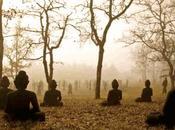 ¿puede producir meditación efectos adversos?