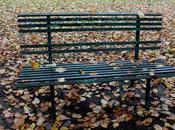 Píldoras observación (I). tarde otoño