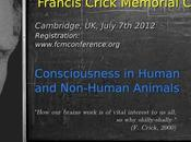 """Argumento: """"Los animales tienen conciencia autoconciencia"""""""