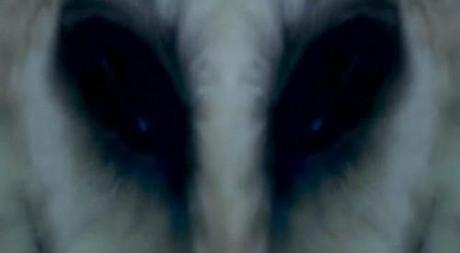 Especial de Horror: \'El cuarto contacto\', construyendo el miedo ...