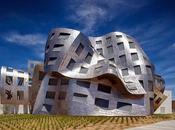 FRANK GEHRY: esculpiendo arquitectura