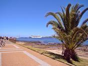 Arribos Cruceros temporada 2014 2015 Listado arribos previstos Punta Este