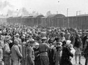 Donde reposan trenes Auschwitz