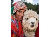 Perú: Tierra Incas