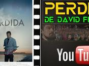 "Vídeo-crítica ""Perdida"", David Fincher"