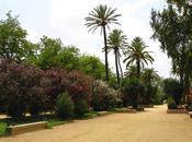 Proyecto Zona Verde Pública Espacio Parque Jardín Percepción