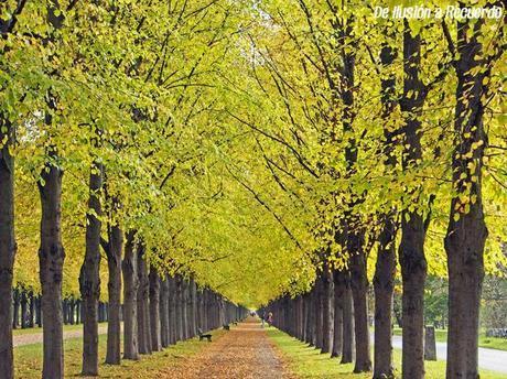 Jardines-Hannover