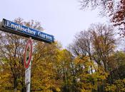 Caminar otoño Jardín Inglés Munich