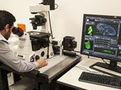Rosario cuenta instituto cientifico unico tipo America Latina