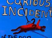 curioso incidente perro medianoche, Mark Haddon
